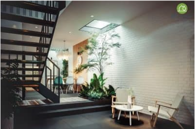 Nội thất xanh – Giải pháp hữu hiệu cho không gian sống xanh trong đô thị