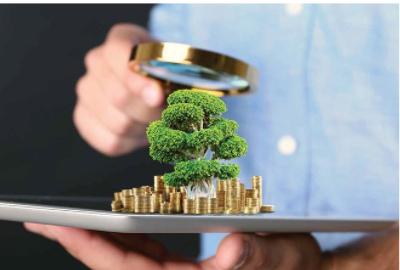 Tín dụng xanh – xu hướng cho vay mới của các ngân hàng