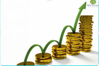 Các công cụ vay, nợ trong tài chính xanh