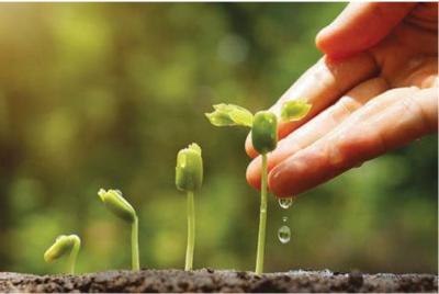 Kinh nghiệm xây dựng hệ thống tài chính xanh tại Hàn Quốc